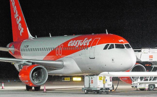 Unas gaviotas dañan un motor y abortan el despegue de un avión con 120 viajeros