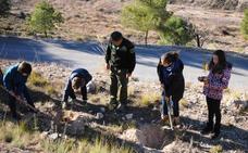 Unos 200 escolares del Cervantes participan una actividad de reforestación dentro del proyecto 'La vida secreta de los árboles'