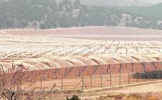 Denuncian la transformación de 2.000 hectáreas de secano en regadíos «intensivos sin control»
