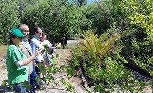 Cuatro programas de empleo para mejoras en zonas verdes y en entornos urbanos de Caravaca