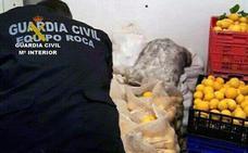 Recuperan ocho toneladas de limones robados en Torre Pacheco