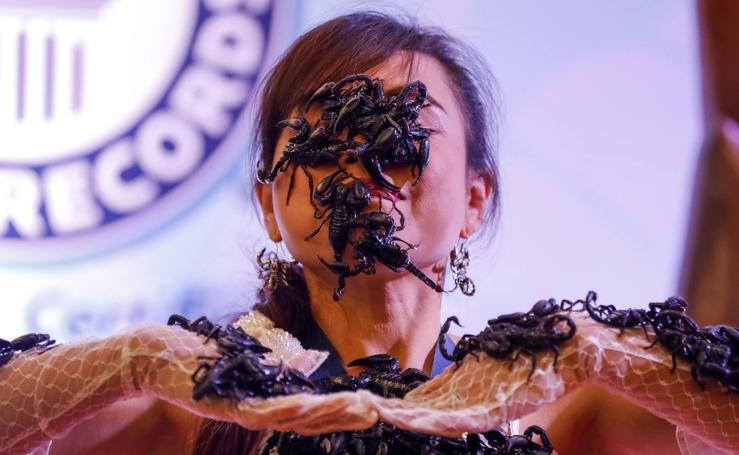 La reina de los escorpiones