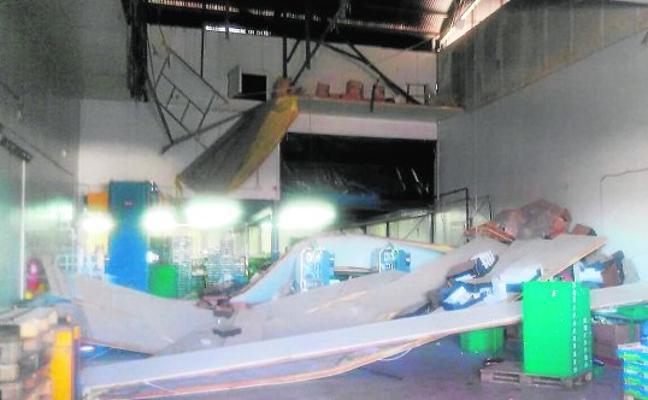 Heridos cinco trabajadores al desplomarse parte del techo de un almacén de frutas