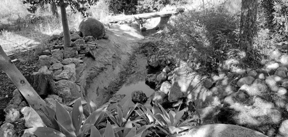 Limpian las charcas ante la alarma por el mosquito tigre