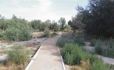 Huermur denuncia el estado de los sotos del río Segura a su paso por Las Torres de Cotillas