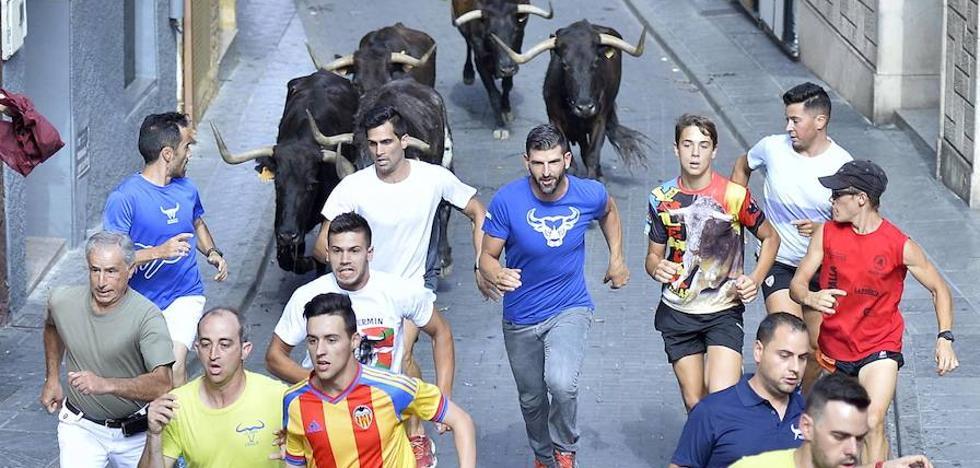 El calor 'abrasa' a las vacas y a los mozos en Moratalla