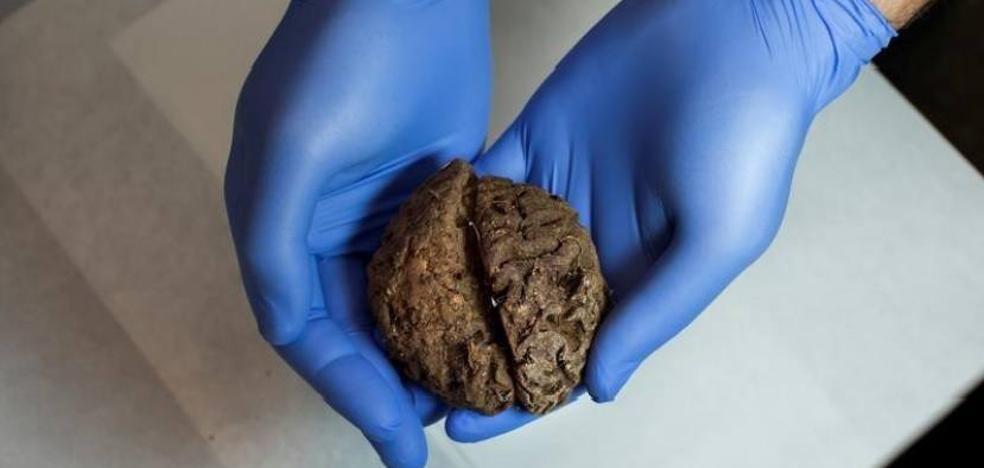 Hallan 45 cerebros conservados de forma natural en una fosa común de la Guerra Civil