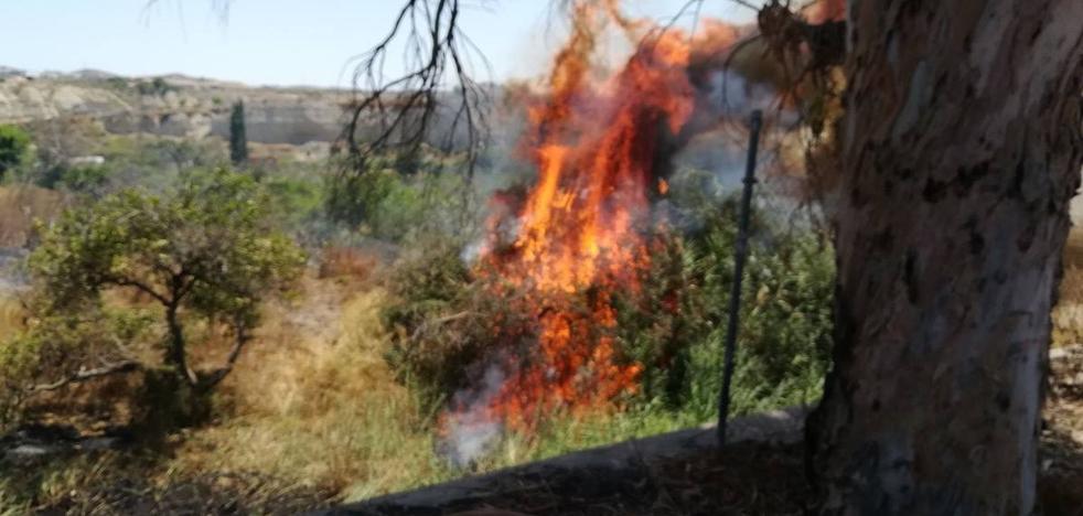 Controlan el incendio en una zona agrícola de Albudeite