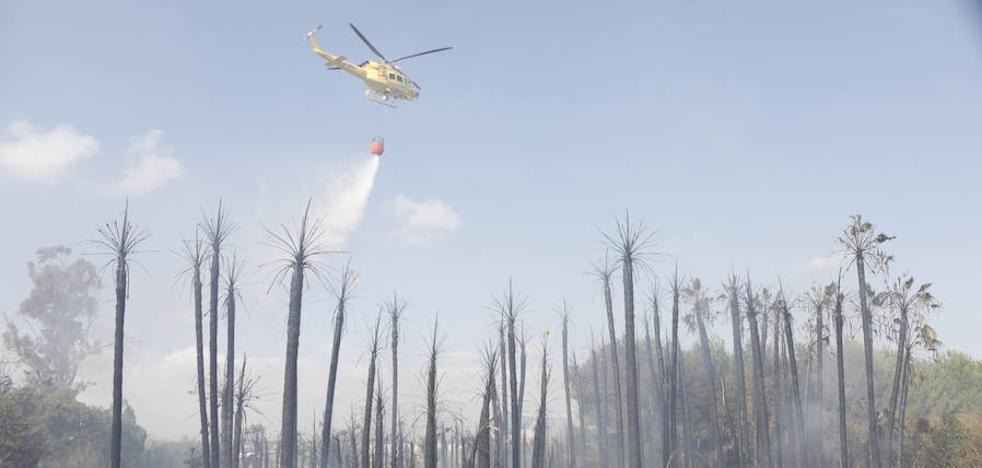 Extinguen un incendio junto a un vivero en Molina de Segura