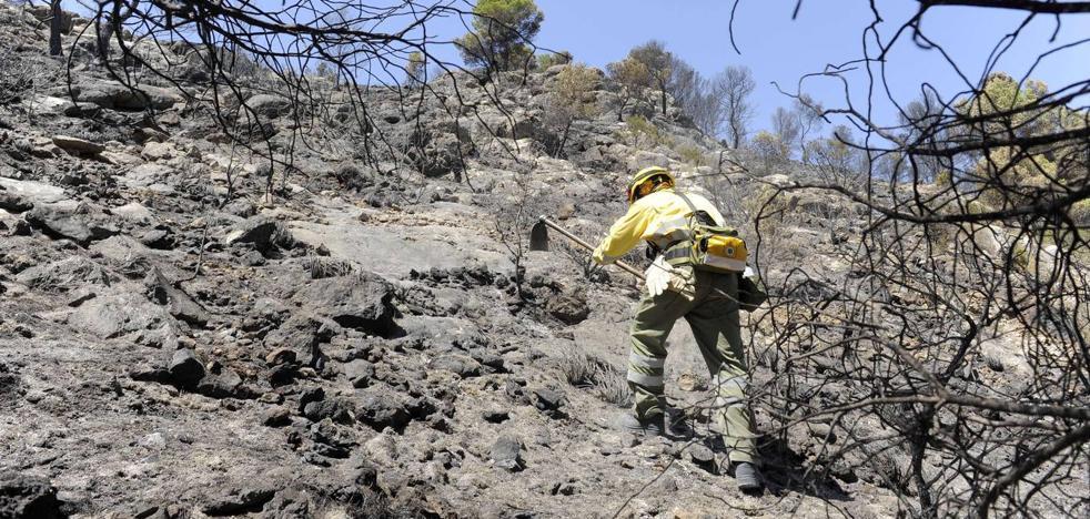 Calasparra pide colaboración ciudadana para atrapar a los responsables de los fuegos