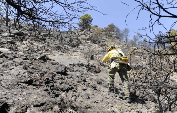 Un agente medioambiental trabaja, este sábado, en la extinción del incendio declarado en la Sierra de San Miguel.