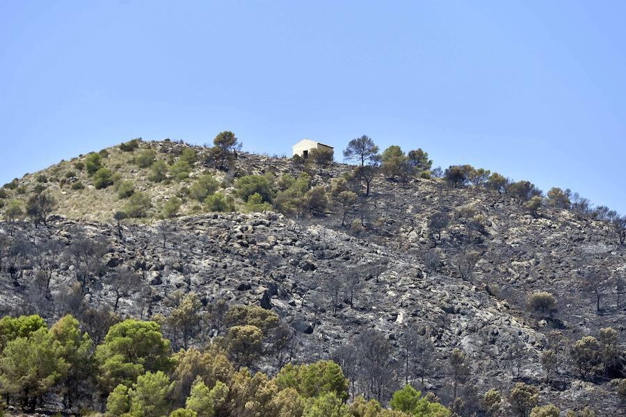 Así queda la Sierra de San Miguel después del incendio