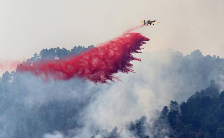 Más de 3.200 hectáreas quemadas en Yeste