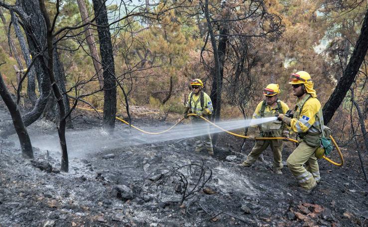 Los bomberos avanzan en perimetrar al incendio de Yeste