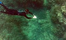 El Mediterráneo, a fondo