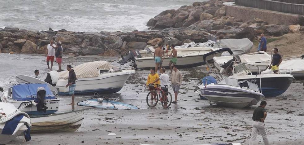 El fuerte viento provoca caídas de palmeras y el derrumbe de un quiosco y un muro en La Manga