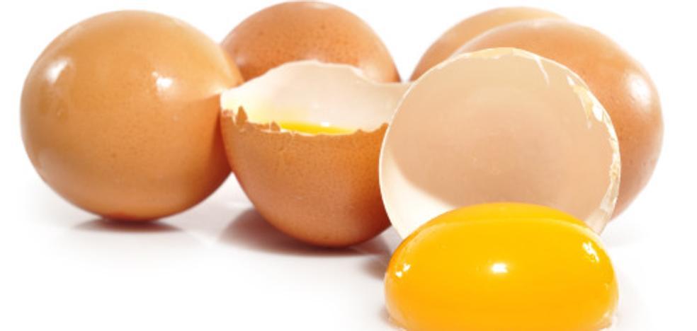 Bélgica acusa a Holanda de ocultar información sobre los huevos contaminados