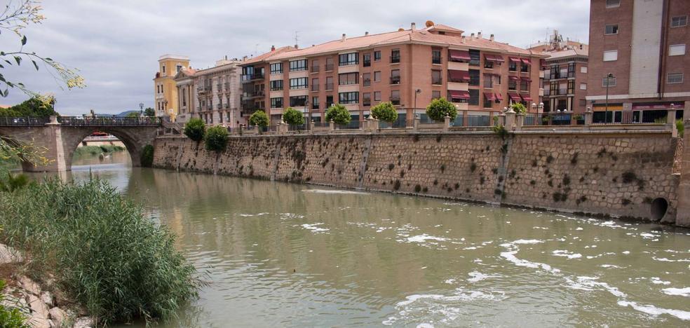 Ballesta: «Se iniciarán las acciones que procedan si hay un responsable del estado del río Segura»