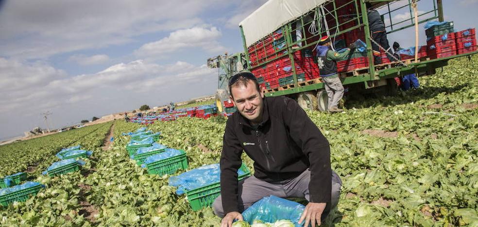 Asaja Murcia reclama una marca de calidad para las frutas y verduras murcianas