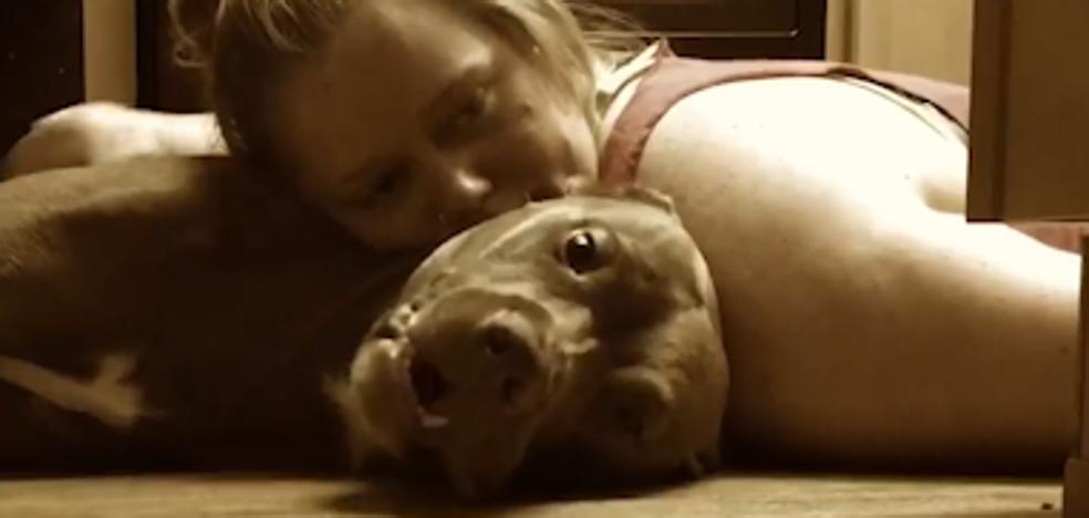 Un perro entrenado para proteger la cabeza de su dueña en caso de convulsiones