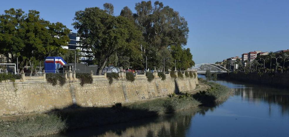 Ahora Murcia denuncia «basuras y la presencia de patos muertos» en la margen del río Segura
