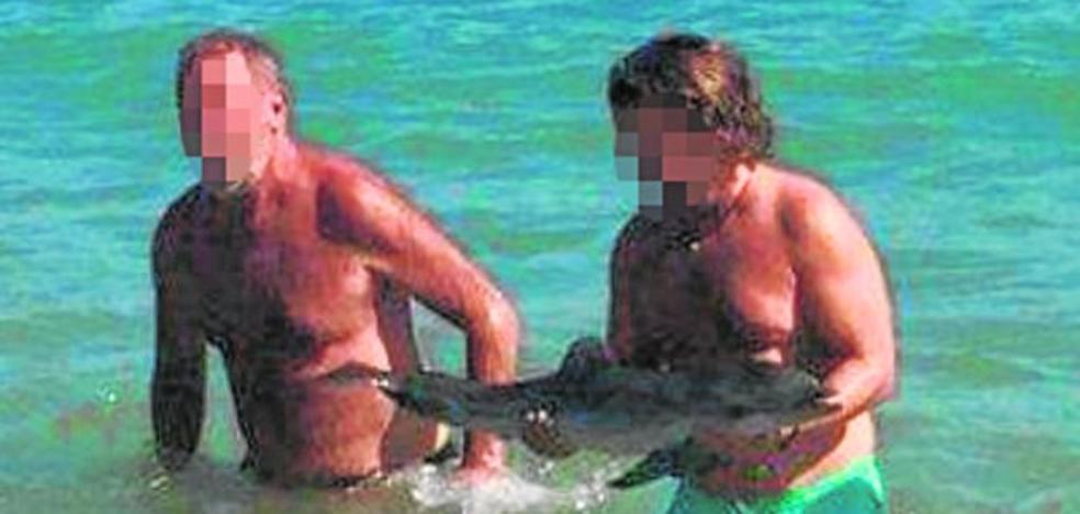 Una cría de delfín muere en una playa de Almería