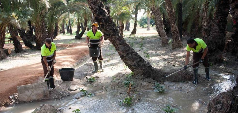 Recuperado el sistema de riego tradicional para el Palmeral de Santiago y Zaraiche