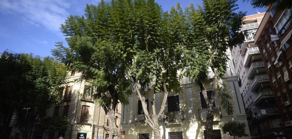 Cambiemos Murcia critica el «estado de desguace» de los museos del municipio