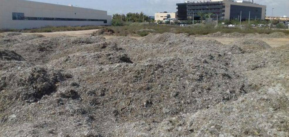 ANSE denuncia la «roturación y vertido de arribazones» en un humedal de San Pedro