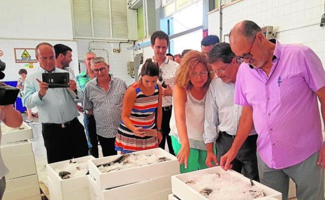 La encañizada de El Ventorrillo tendrá uso turístico y educativo