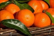 Muere una niña después de comer una mandarina