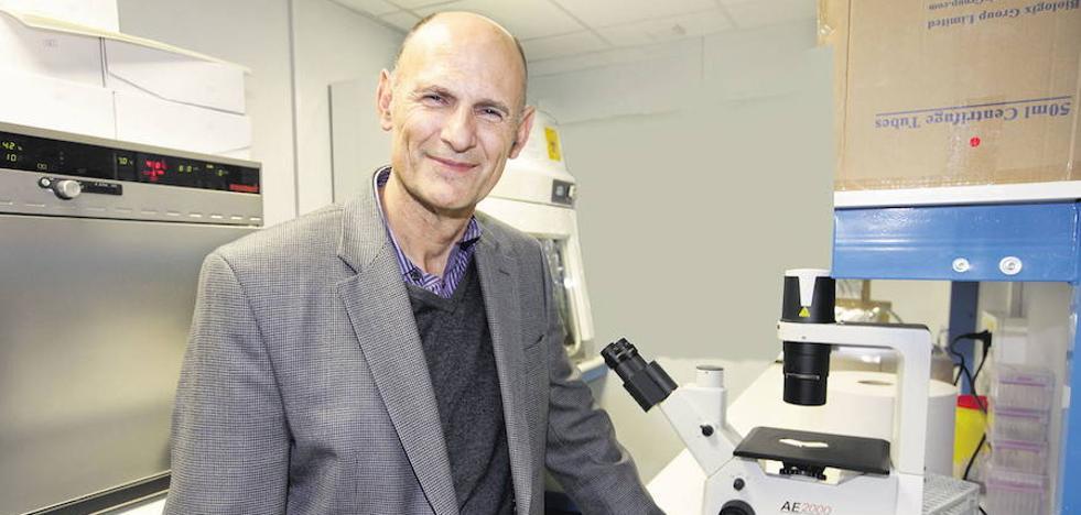 Izpisua descubre una biomolécula que ayuda al sistema inmunológico a superar el cáncer