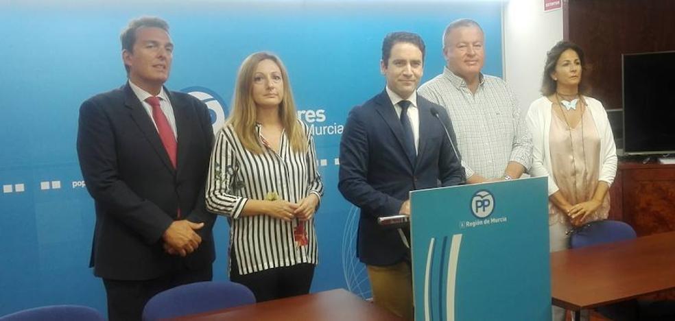 PP: «La oposición reconoce en privado que la llegada del AVE a Beniel es un disparate»