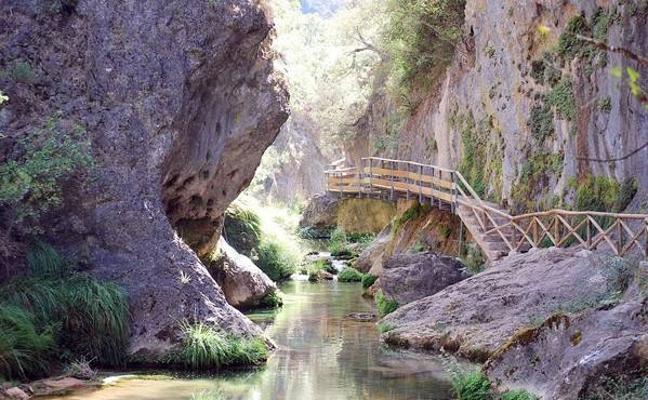 Buitres, fresnos y cascadas