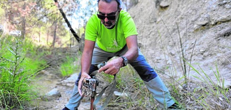 Criaderos de nutrias y mirlo acuático, en el Alto Alhárabe