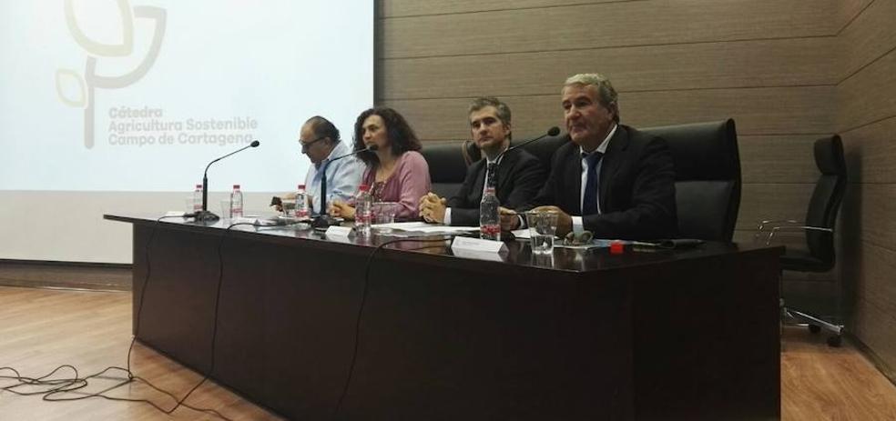 El Gobierno regional «da prioridad a las actuaciones relacionadas con el Mar Menor»