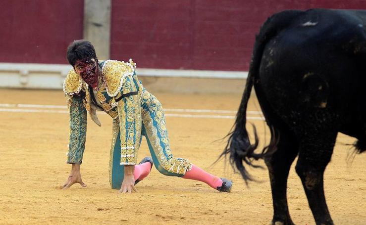 Cayetano Rivera sufre una cornada de tres trayectorias