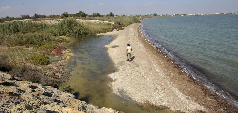 Agricultura reduce el filtro verde del Mar Menor y lo retrasa sin fecha