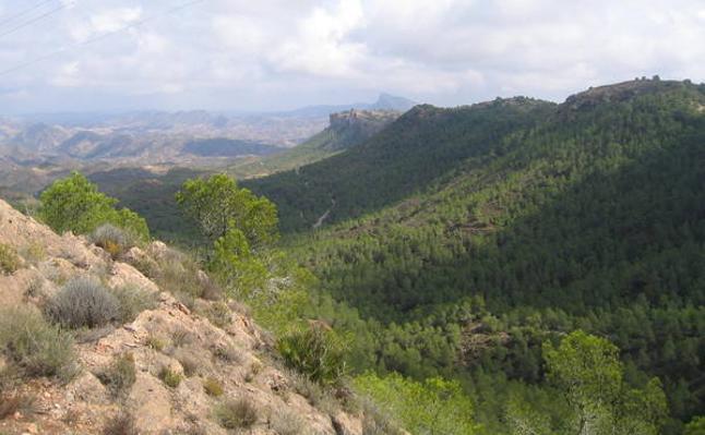 42 km en bici por El Valle