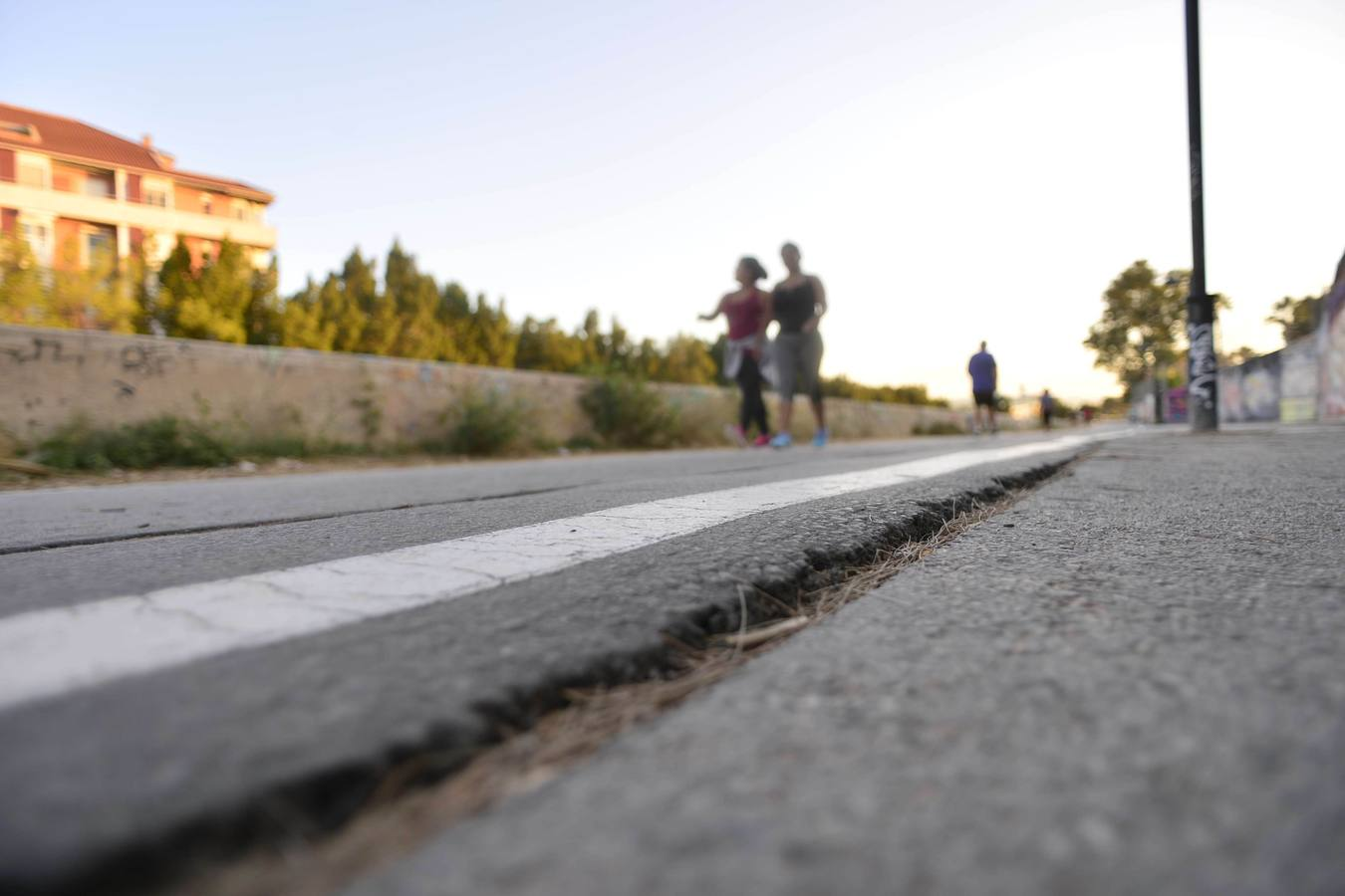 Exigen un mejor mantenimiento de los carriles bici en Murcia