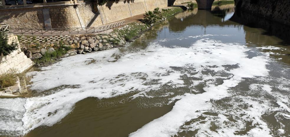 Decenas de peces muertos y una capa de espuma afean de nuevo la imagen del río