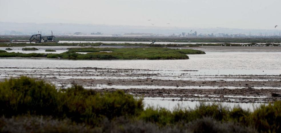 Medio Ambiente propone hacer dragados para «aportar vida» al Mar Menor