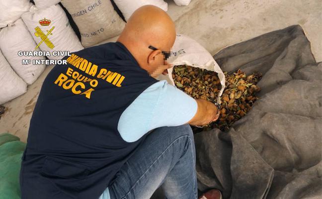 Dos detenidos por la sustracción de una tonelada de almendras en Moratalla