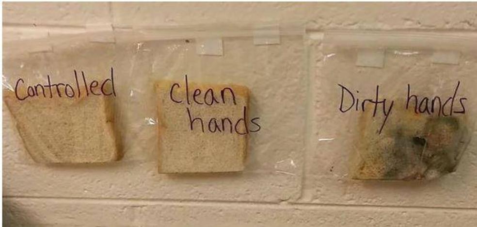 El experimento de una maestra que muestra la importancia de lavarse las manos