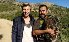 La Comunidad recupera un águila real herida por un disparo y la libera en Sierra Espuña