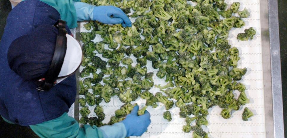 La exportación de verduras congeladas se frena tras una década de expansión