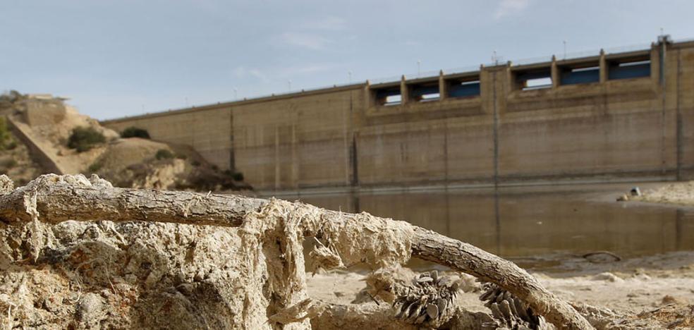 El Segura solo tiene 15 hm3 disponibles en la cabecera, que bate otro récord de sequía