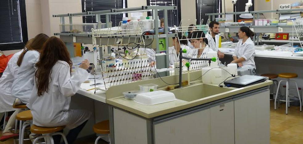 La Facultad de Veterinaria de la UMU, la tercera mejor de España