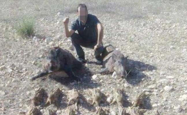 Denuncian a cinco personas por la caza ilegal de hembras y crías de jabalí en Jumilla