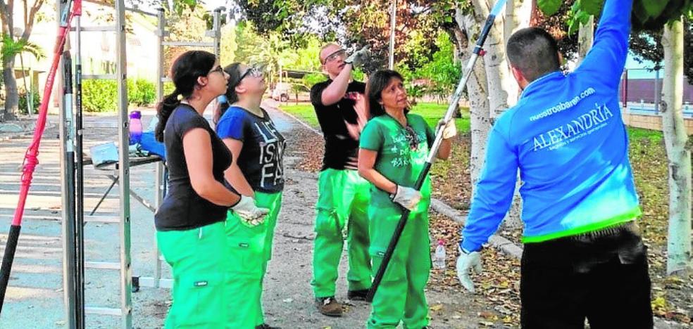 Alumnos daneses de jardinería en el Cifea